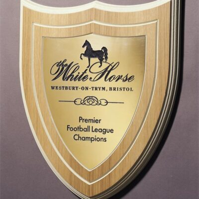 Engraved Plaque for a football team